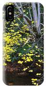Sugar Maple Birch River Mirror Image IPhone Case