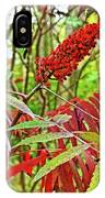 Sumac On White Pine Trail In Kent County, Michigan  IPhone Case