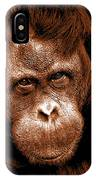 Sumatran Orangutan Female IPhone Case