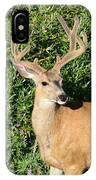 Summer Buck IPhone Case