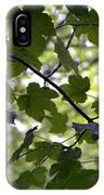 Summer Xxxv IPhone Case