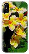 Summertime In Hawaii IPhone Case