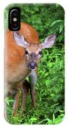 Summertime Visitor IPhone Case