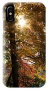 Sun And Autumn IPhone Case