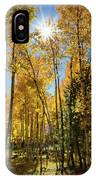 Sun Peaking Through The Aspens  IPhone Case