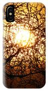 Sun Tree IPhone Case