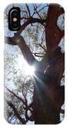 Sun Tree IPhone Case