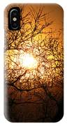 Sun Trees IPhone Case