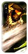 Sunbathing Butterfly IPhone Case