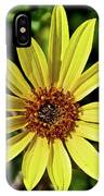 Sunflower Along Etiwanda Falls Trail In San Gabriel Mountains-california  IPhone Case
