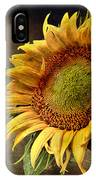 Sunflower Art 2 IPhone Case
