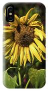 Sunflower Close Up IPhone Case