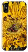Sunflower Covered In Ladybugs IPhone Case