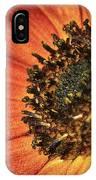 Sunflower Dance IPhone Case