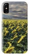 Sunflower Fields Near Denver International Airport IPhone Case