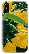 Sunflower Rear IPhone Case