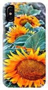 Sunflower Row IPhone Case