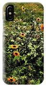 Sunflower Stalks IPhone Case