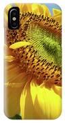 Sunflower Sunlit Sun Flowers 6 Blue Sky Giclee Art Prints Baslee Troutman IPhone Case