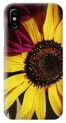 Sunflower With Dahlia IPhone Case