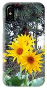 Sunflowers And Pine Cones IPhone Case