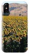 Sunflowers Of Vacaville IPhone Case
