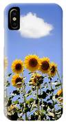 Sunflowers With A Cloud IPhone Case