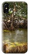 Sunlight In Mangrove Forest IPhone Case