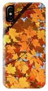 Sunlight In Maple Tree IPhone X Case