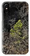 Sunlight On Pine IPhone Case