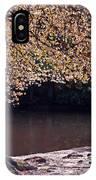 Sunlit Autumn Canopy IPhone Case