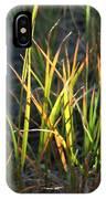 Sunlit Grass IPhone Case
