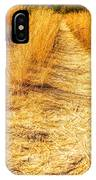 Sunlit Grasses IPhone Case