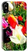 Sunlit Tulips IPhone Case