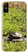 Sunning Turtle In Swamp IPhone Case