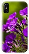 Sunny Petunias 1 IPhone Case