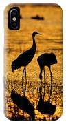Sunrise At The Crane Pools IPhone Case