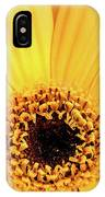 Sunrise Gerbera IPhone Case