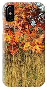 Sunrise On Oaks In Glacial Park IPhone Case