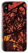 Sunset After The Snow Storm IPhone Case