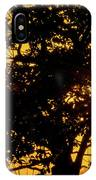 Sunset And Trees - San Salvador I IPhone Case