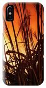 Sunset Grass IPhone Case