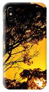 Sunset In Tujunga IPhone Case