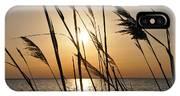 Sunset Through The Dune Grass IPhone Case