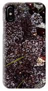 Super Small Grapes IPhone Case