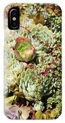 Super Succulents IPhone Case