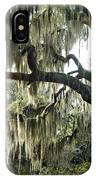 Surreal Gothic Savannah Georgia Trees With Hanging Spanish Moss IPhone Case
