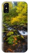 Surrounded By Fall Color IPhone Case