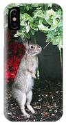 Surveying Next Leafy Meal IPhone Case