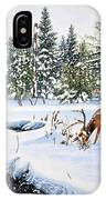 Surviving The Winters IPhone Case